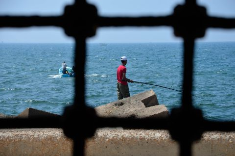 Ocean angler